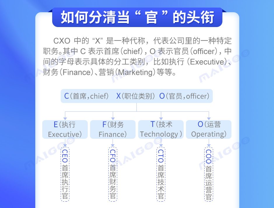 CEO是什么职位,公司高层职位名称,CEO和CTO有什么区别,CFO是什么职位